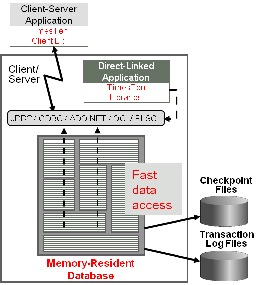 Memory Database For IT Professionals